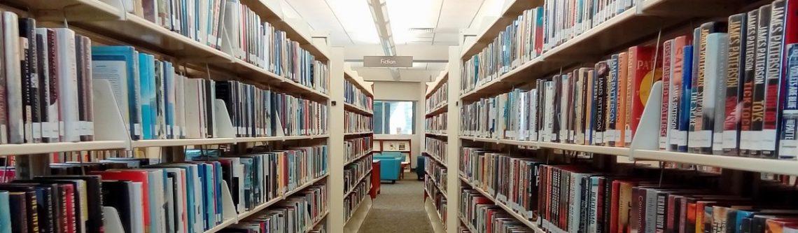 Stadtbibliothek Flensburg macht Spass