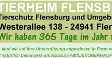 Tierheim Flensburg macht Spass